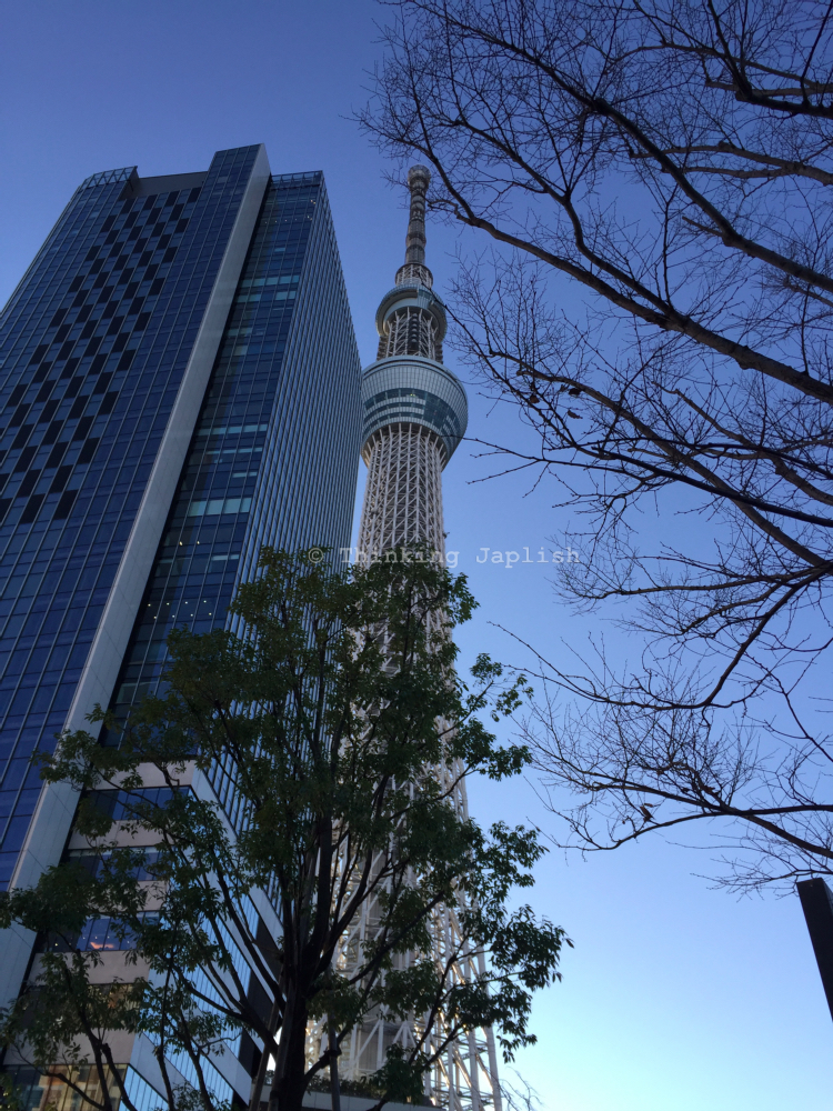 What to See at Skytree
